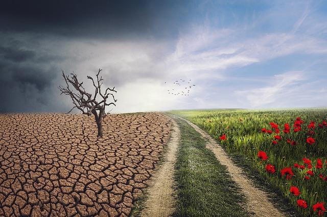 Capitalisme et changement climatique : les bouleversements à venir